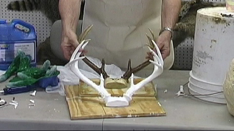 Using Dragon Skin™ Silicone to Reproduce Antlers
