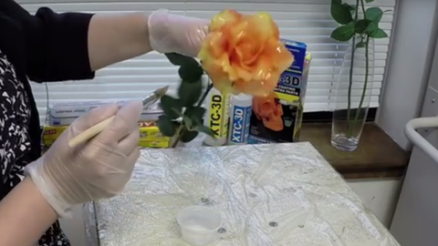 How To Coat a Flower With Resin